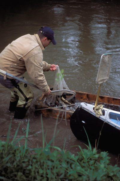 Canoe Launch