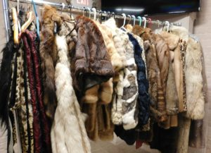 A rack loaded with furs for sale.