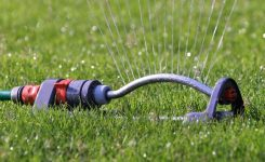 It's Time to Water the Lawn: How Often and How Long