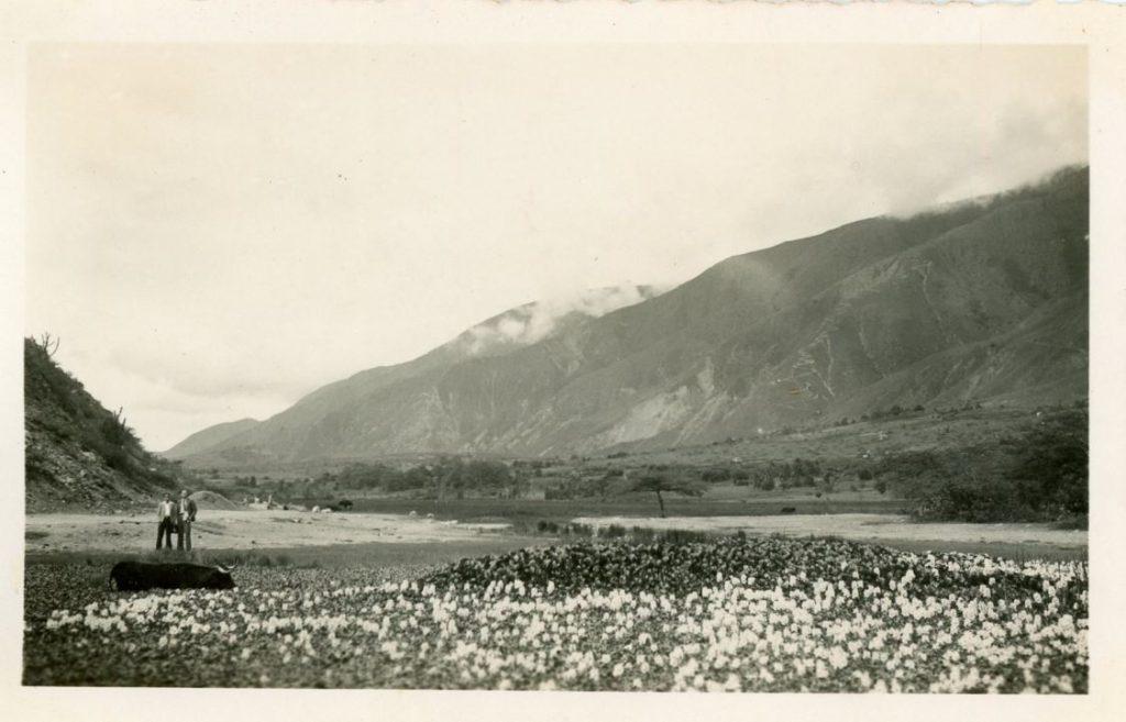 1936. Mérida. La UNE en Lagunillas.