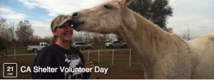 volunteer screen shot