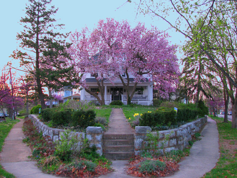 I will close for now with this shot of Dan and Lisa Greenwood's landmark home on the wedge between Hazel and Maple. their magnolias in bloom are not to be missed. It won't be long. I predict at least two more posts on the stonework of Maplewood. Stay tuned. As always I appreciate all of your questions, comments, emails and tips, etc. Unless stated otherwise, all photos are by Yours Truly.