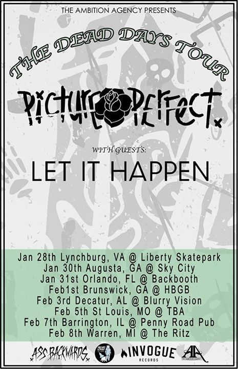 Picture Perfect-Tour-Poster