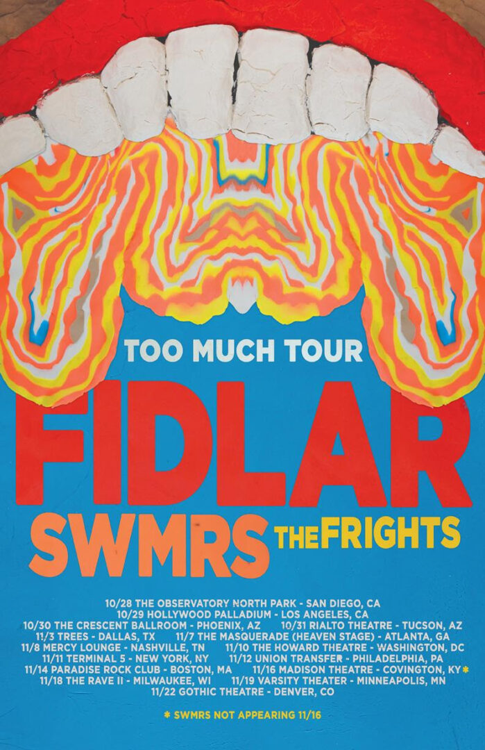 Fidlar - Too Much Tour - poster