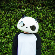 White Panda – FIRST CONCERT EVER