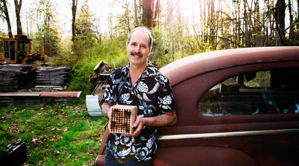 Gordon Cyr of Mason Bee Central, speaker at the Cortes Island Museum ZOOM AGM
