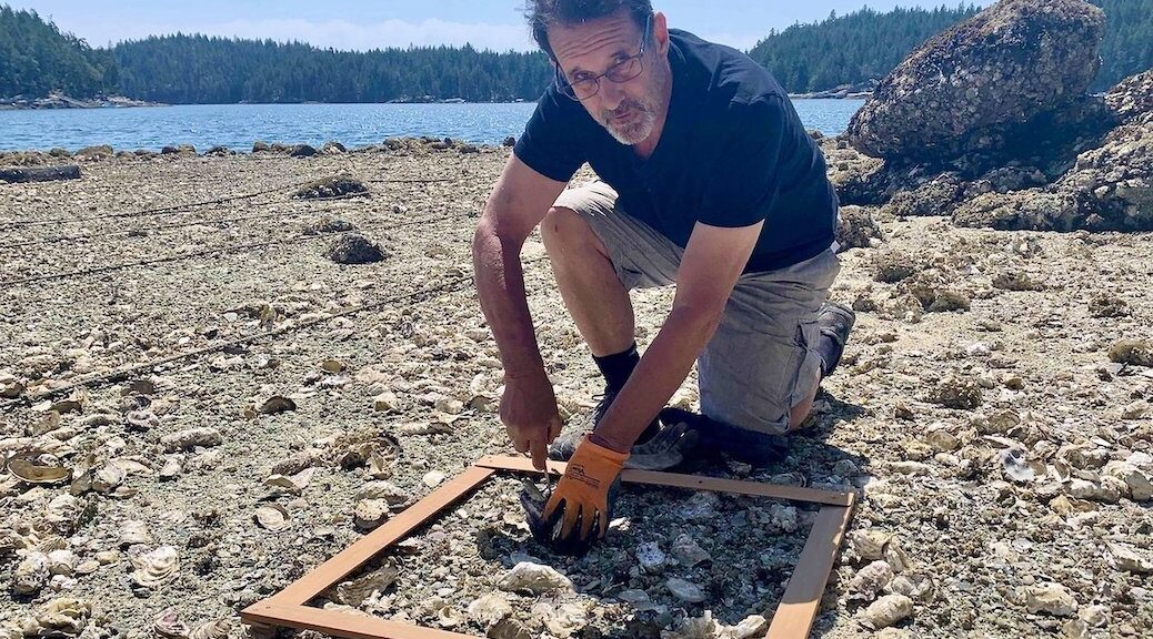 A shellfish grower surveying his losses in Gorge Harbour
