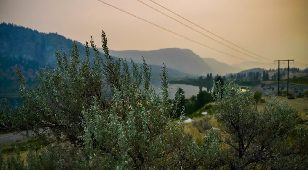South of Vaseux Lake, B.C., the Nk'Mip Creek fire continues to burn amid severe drought.