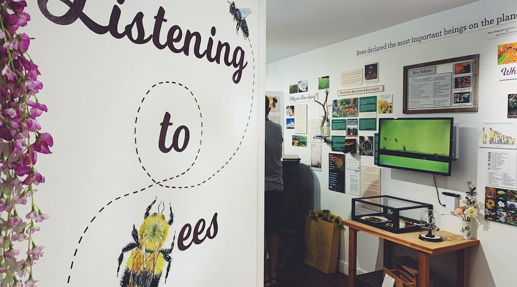 The words 'LIstening to Bees' are spelled out on a wall, beyond which are a series of displays in glass cases, photographs and posters