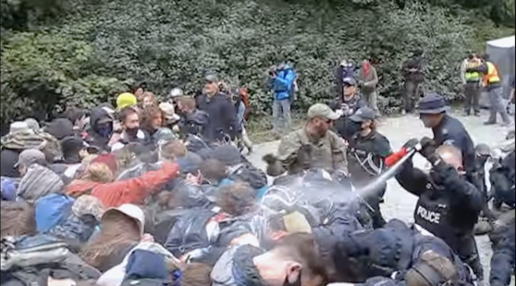 RCMP officers can be seen using pepper spray on Fairy Creek old-growth protesters