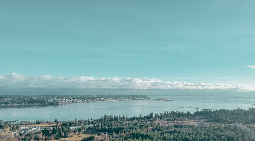 Aerial view of Courtenay and Comox