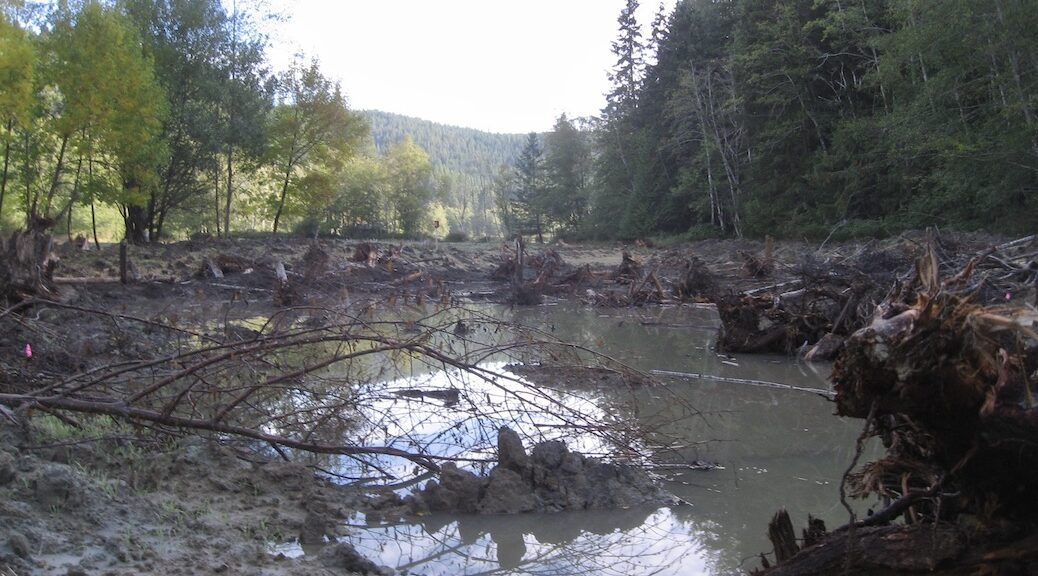 A pond surrounded by monds of dirt and debris. The treeline is in the distance