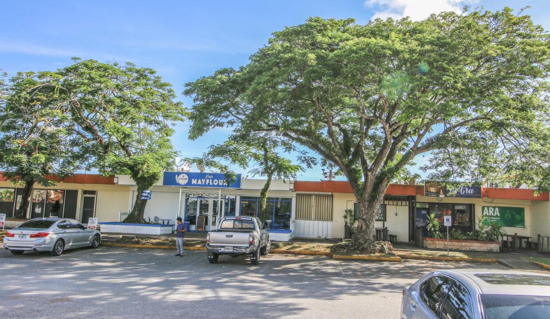 Summerville Commercial Center 10232019-013