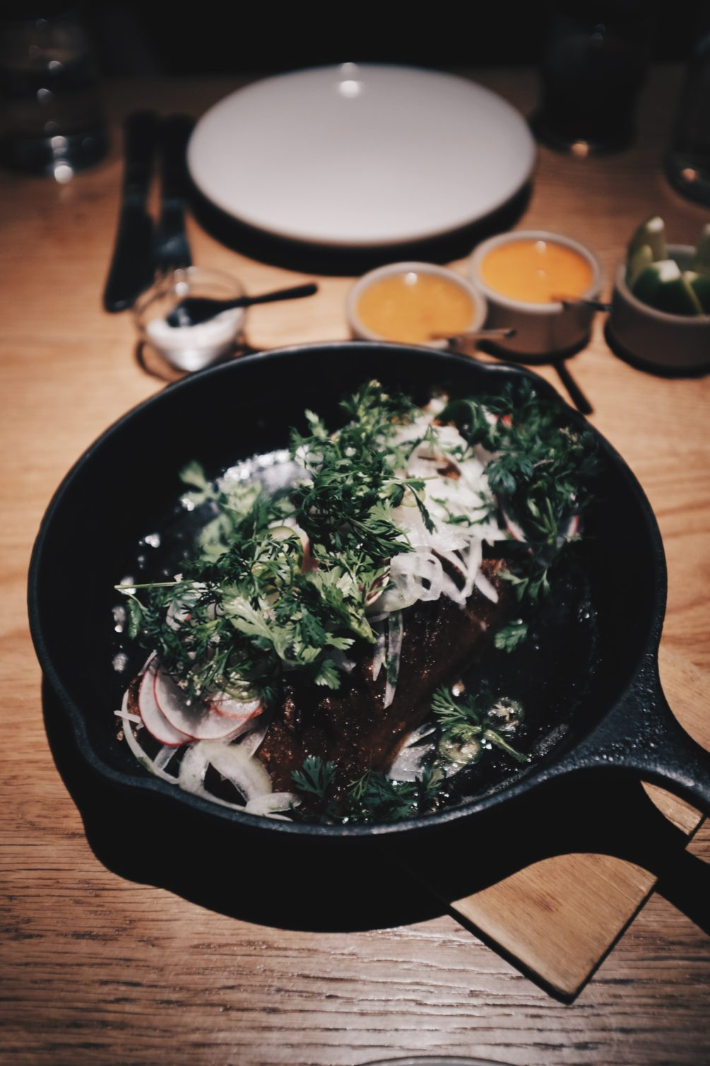 duck carnitas with onions, radishes and cilantro