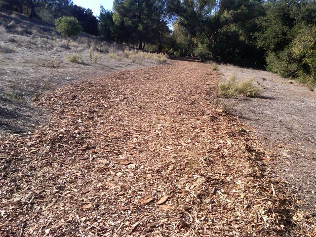 Chips flattened - Belgatos Path Gets New Wood Chips