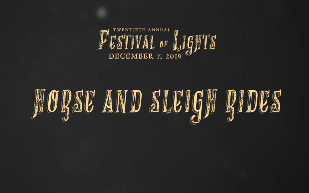 Festival of Lights, 2019 – Horse and Sleigh Rides
