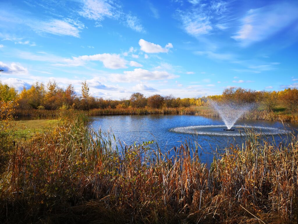 Valleyview Trout Pond in Autumn by Adrian Petrilli