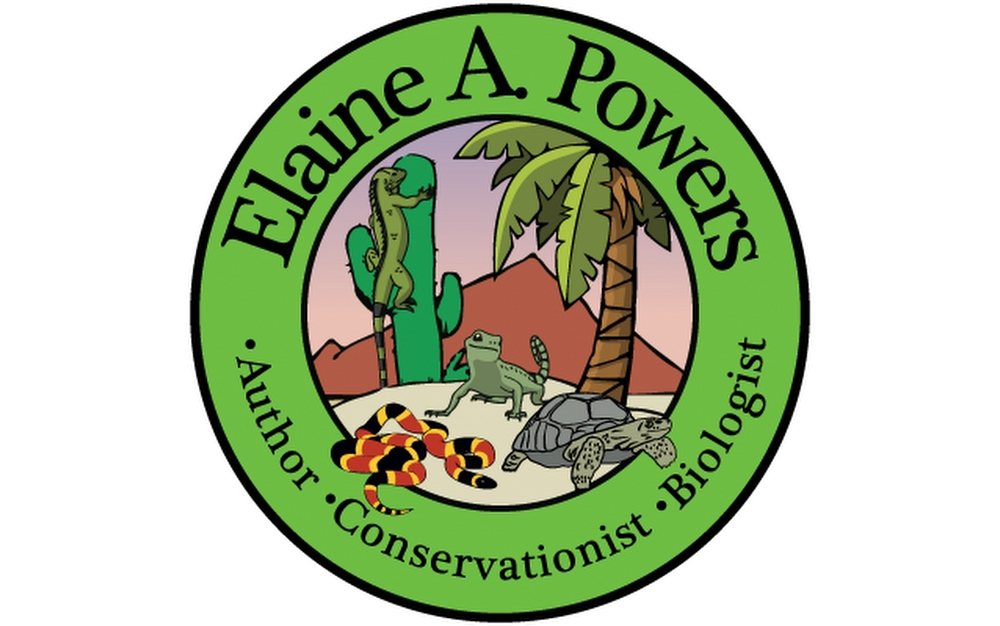 logo of Elaine A Powers