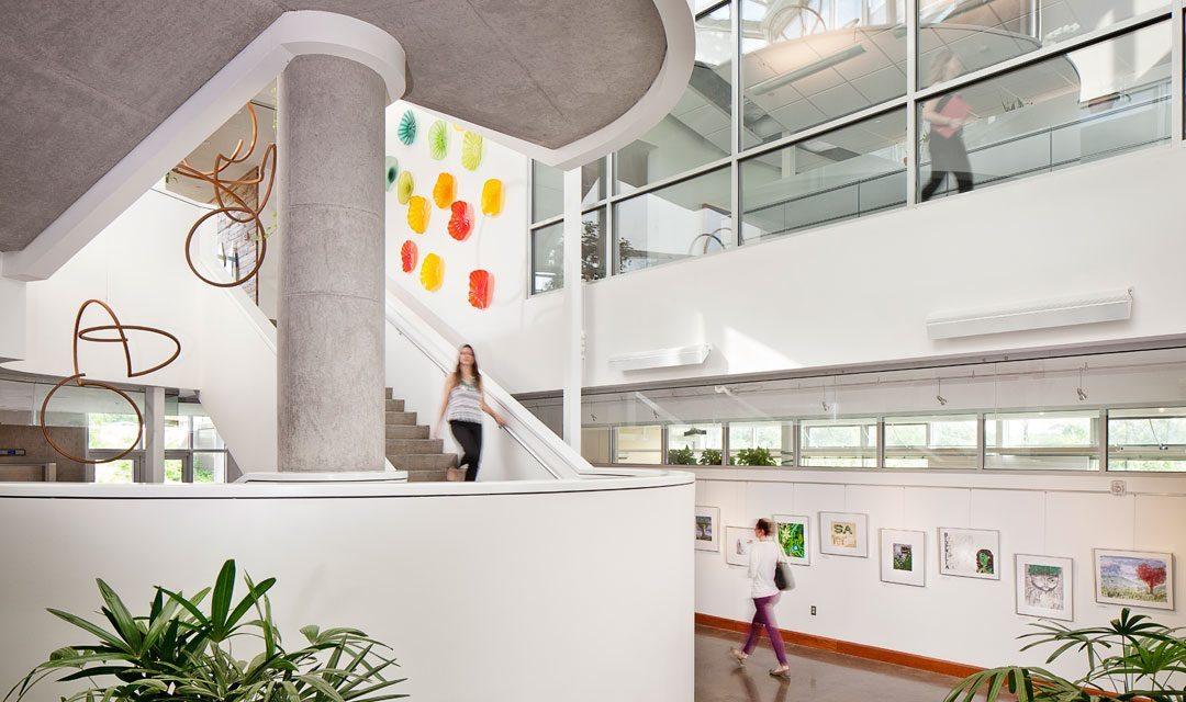 Biophilic Design: Creating Joy Through Design