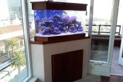 aquariums-near-me-residential-best-aquariums-san-diego