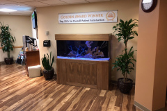 commercial-aquarium-san-diego-ca-custom-aquariums-doctors-office