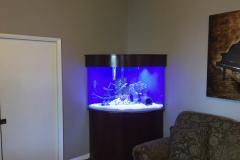 residential-fish-tank-san-diego-free-standing