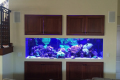 residential-fish-tank-san-diego-in-wall-with-storage