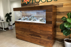whole-foods-aquarium-san-diego-ca-custom-aquariums