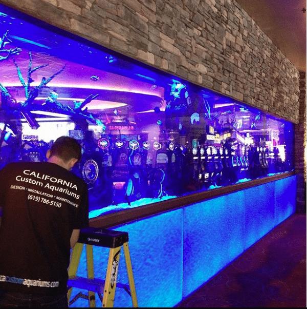 fish tank installation at casino