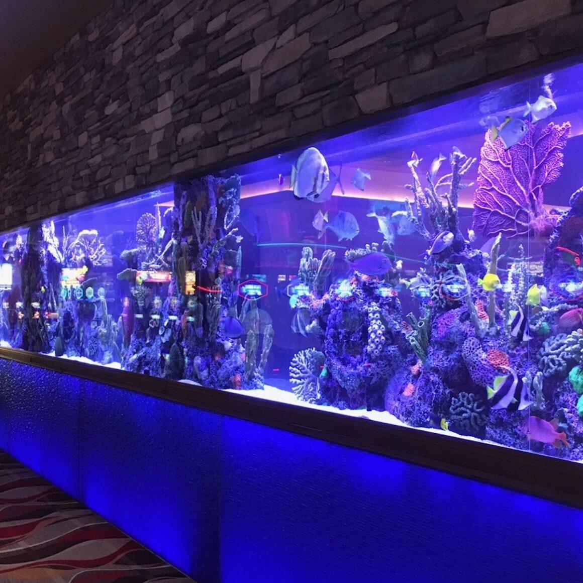 custom aquariums in wall at casino
