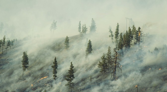 Washington Wildfire Season