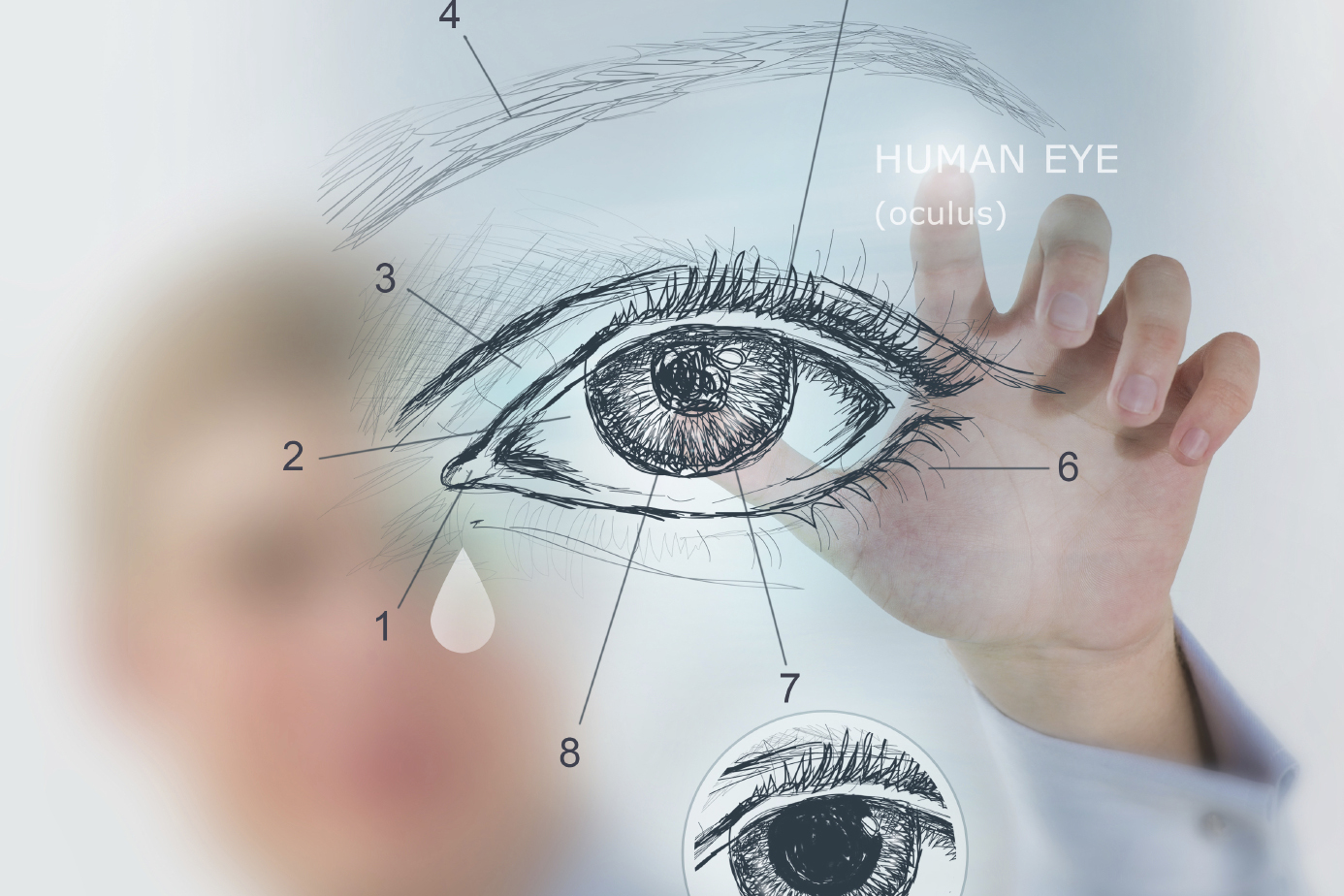 Glaucoma Detection