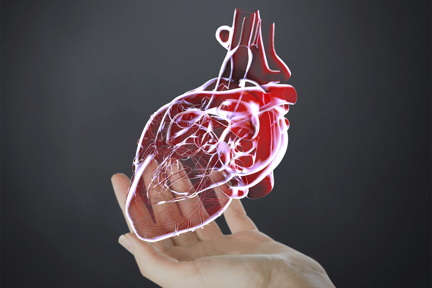 Connect to Your Heart Health