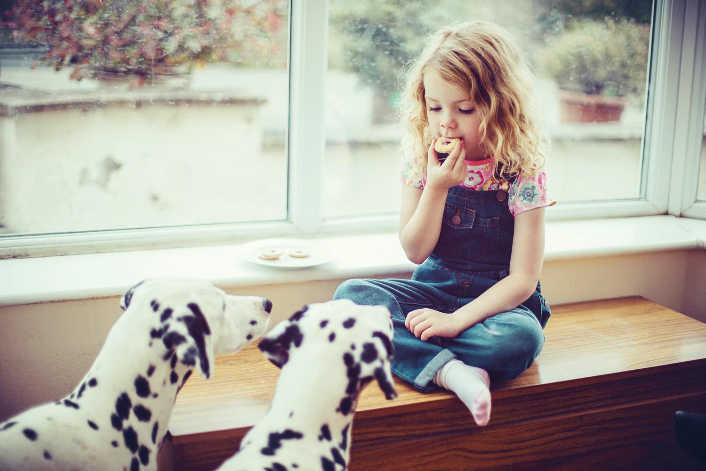 Feeding Pets Smart