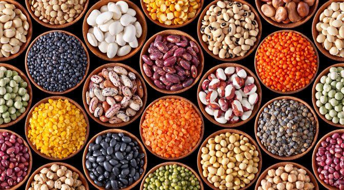 Healthy Bean Recipes