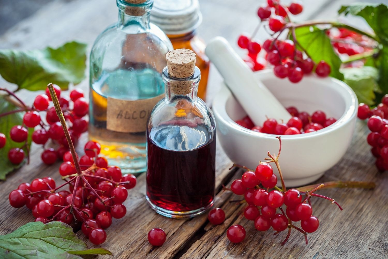 Cranberry Extract Interactions