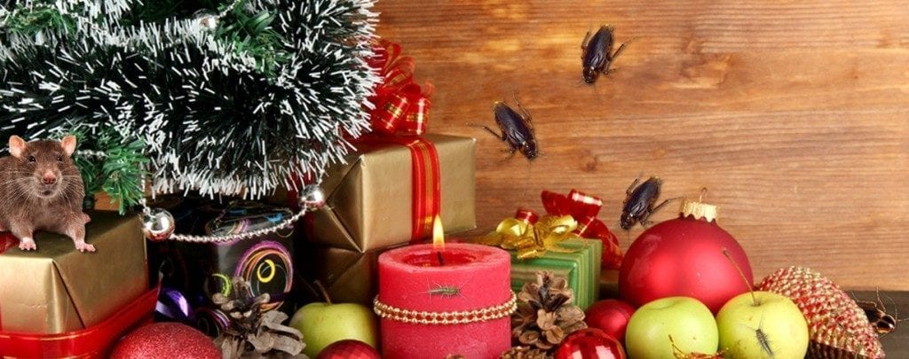 Ban Pests from Your Arizona Home this Christmas