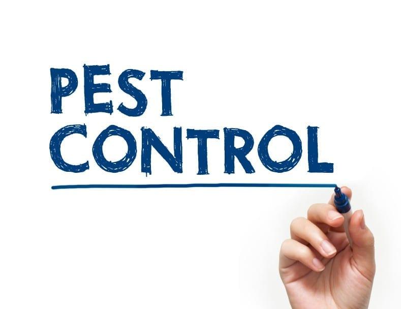 Top 5 Pest Control Myths