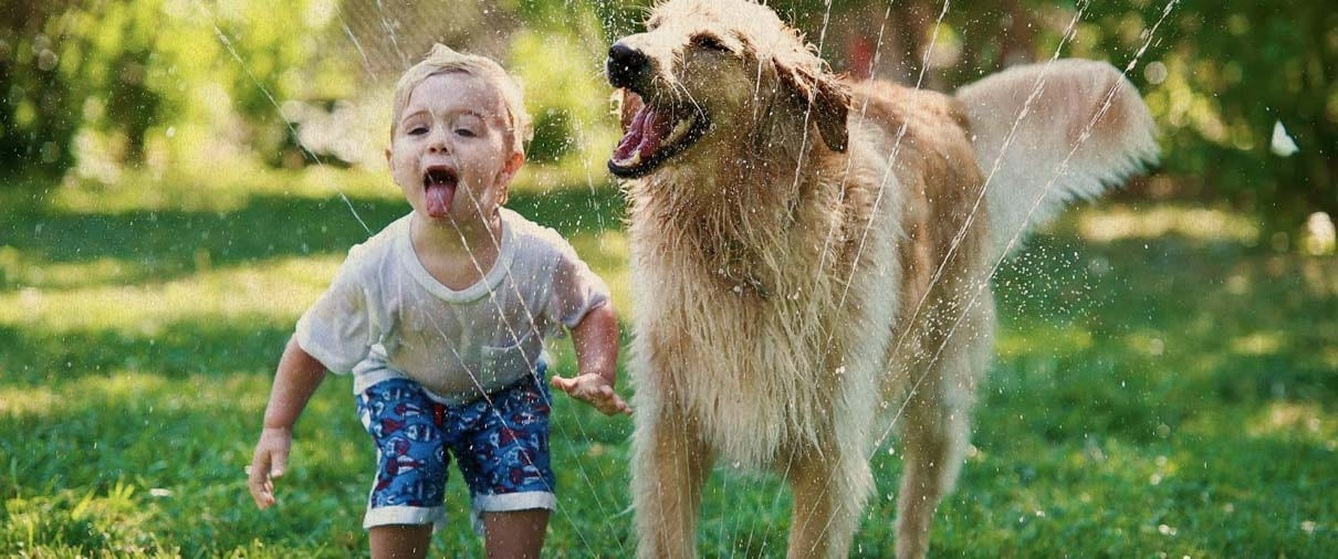 Pet and Kid Friendly Pest Control in Peoria