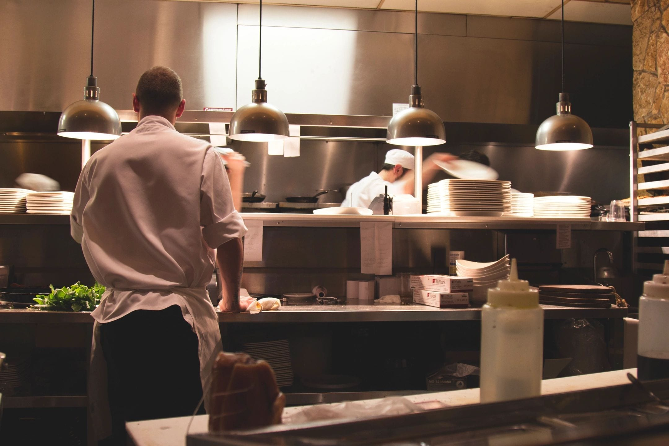 What Restaurant Owners Can Do To Prevent Pests
