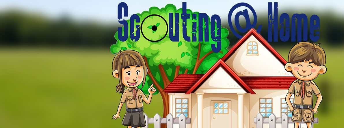 2020-03_gfw_scoutingfromhome