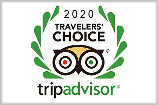 2020 Travelers Choice Award from Trip Advisor