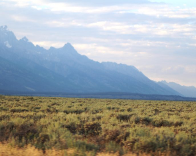 TEN THINGS TO DO IN JACKSON HOLE WY