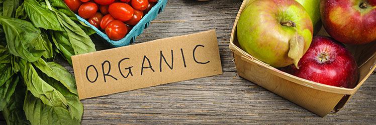 eat organic food