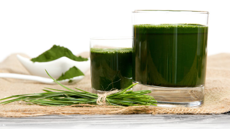 the best organic superfood green juice product review