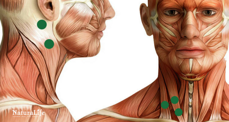 sternocleidomastoid trigger point diagram