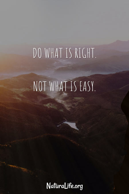 Do What is Right, Not What is Easy. Motivational quote by Naturalife