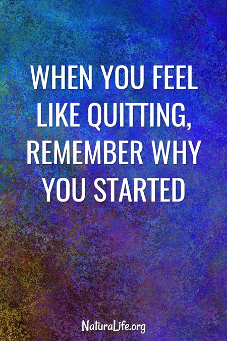 """When You Feel Like Quitting, Remember Why You Started."" Image quote."