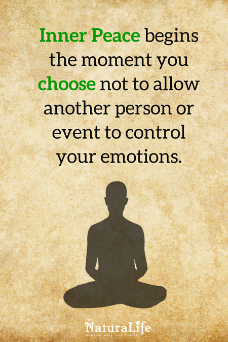 Inner Peace Begins The Moment You Choose Not to Allow Another Person to Control Your Emotions. inspirational quote