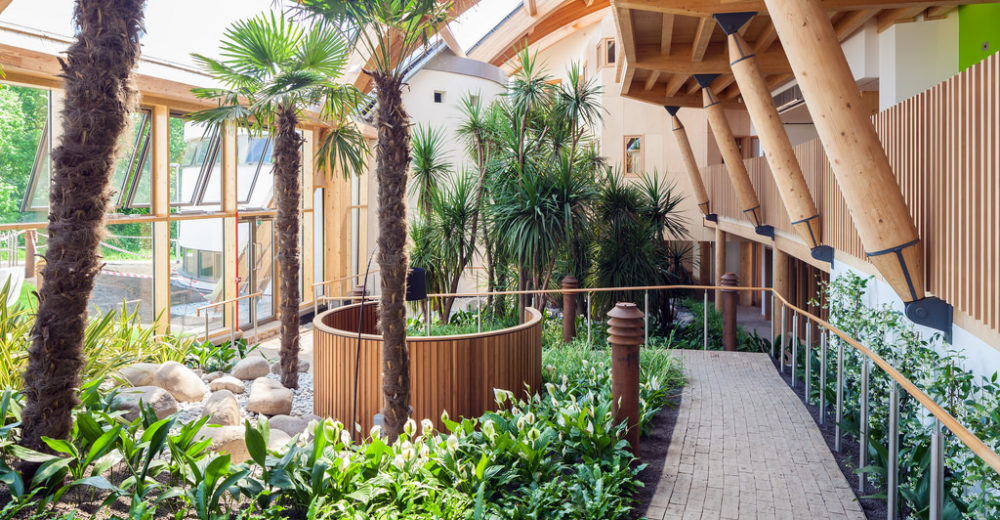 Commercial Property Landscaping Tips to Attract New Customers